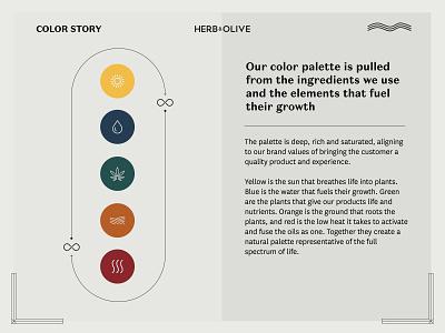 Herb & Olive Color Story storytelling meditkit cbdoil cbd colors branding color palette color story color story