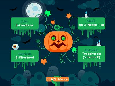 Chemistry of pumpkin — Happy Halloween moon ghost graveyard spooky halloween pumpkin illustration vector