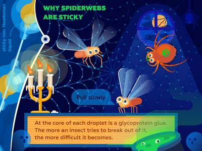 Why spiderwebs are sticky night science ghost cadle halloween web spider illustration vector