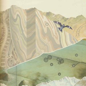 Biological landscape 01