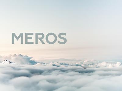Meros website design webdesign ux ui web design graphicdesign design