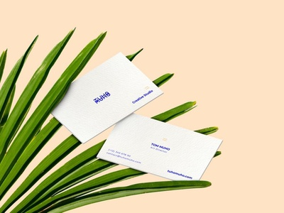 Free Business Cards And Leaves Mockup