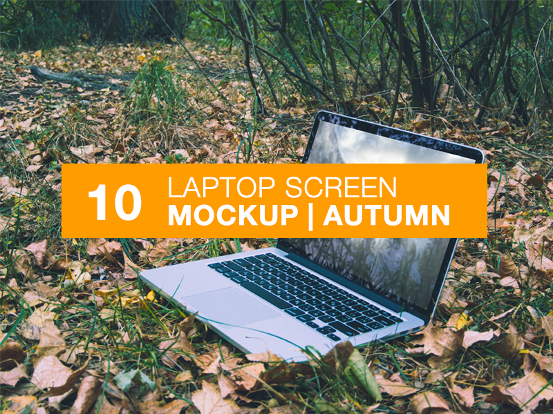 Laptop Screen Mockup | Autumn template mockups mock-ups mockup ios ipad apple psd mock-up