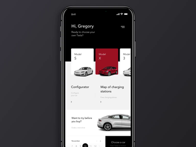Tesla Concept principle flinto video app web-design ios design ux clean web ui