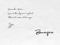 Bonagea - Handwriting Fonts