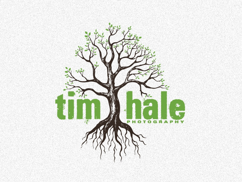 Tim Hale Photo Logo tim hale photographer logo drew wallace tree photography roots