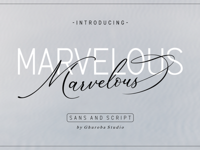 The Marvelous Font Duo invitation business card typeface typography fonts logo design branding