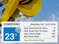 Weather Conditions Widget