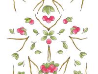 Lingon berry