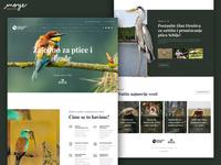 DZZPPS - Birds Website