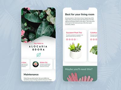 Plantica App minimal design ux white background simple design flowers plants ios app branding ui