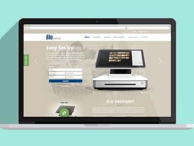 Microsite Opt2 ui jsteinberg web design ux