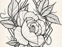 Floral Illustration - Work In Progress