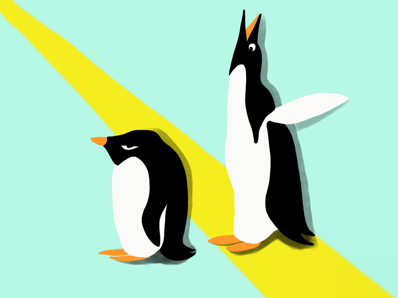 Penguin bro draw silly friends sisters brothers brother penguin illustration illustraor design