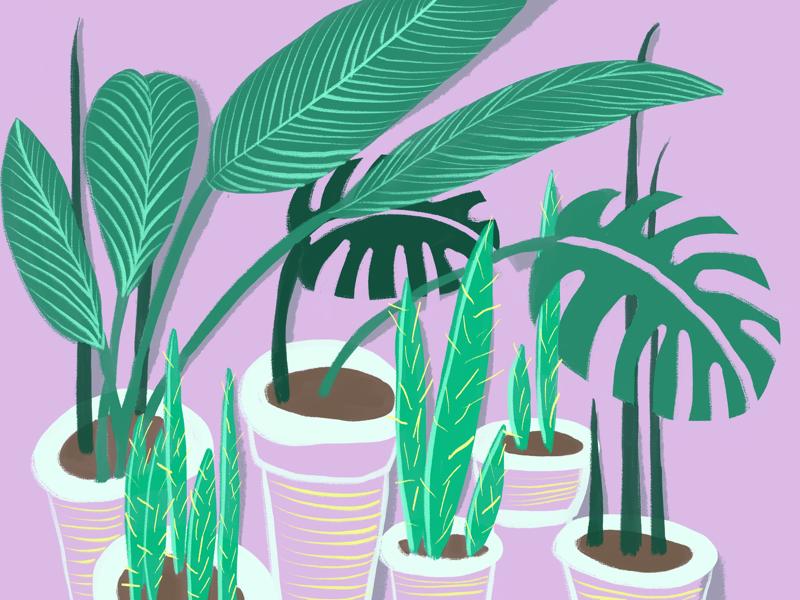 Greens peace colorpalette color design doodleart illustration illustrate summer greens drawing doodle