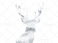 Watercolor Deer Head Clipart PNG Sublimation Graphic