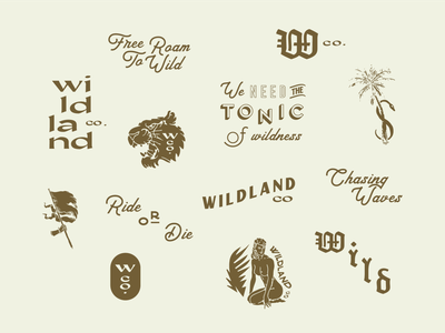 Wildland Type Explorations surf vintage type lockups wildland wild typography