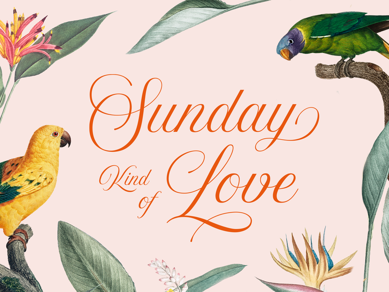 Sunday Kind of Love floral birds song etta james type script lettering typography love sunday