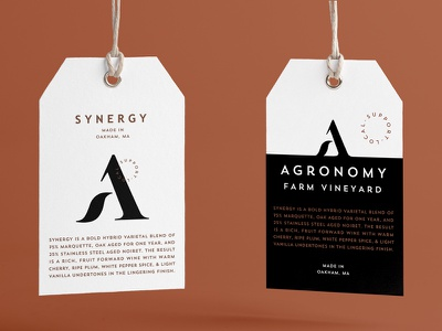 Synergy Hang Tags accent typography type label wine branding tag hang