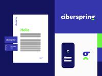 Ciberspring
