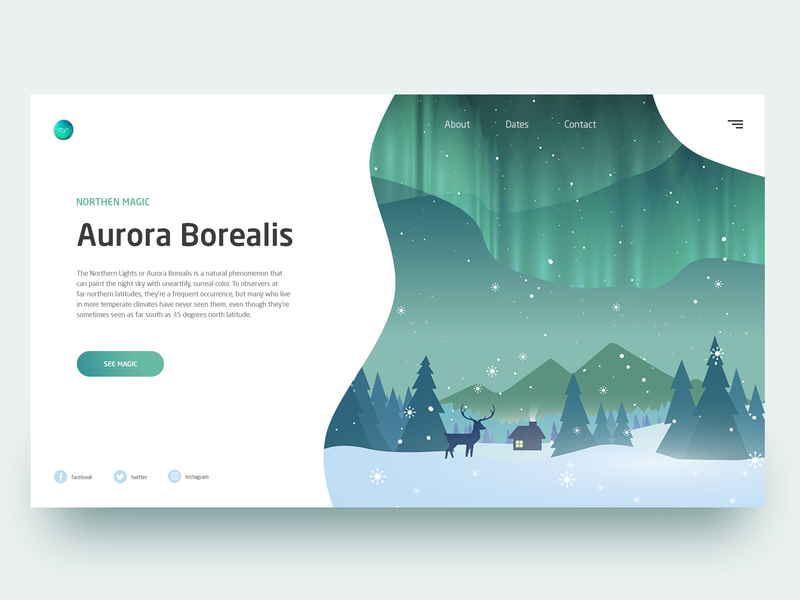 Aurora Borealis Home Page Concept user vector landing homepage web illustration website webdesign ux ui travel page interface design