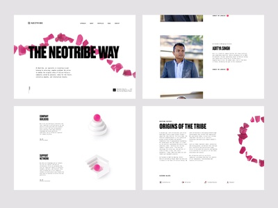 Neotribe Approach layout story telling 3d web