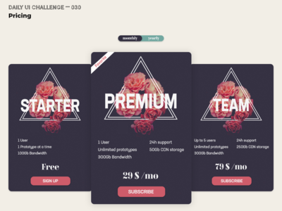 Daily UI Challenge 030 — Pricing