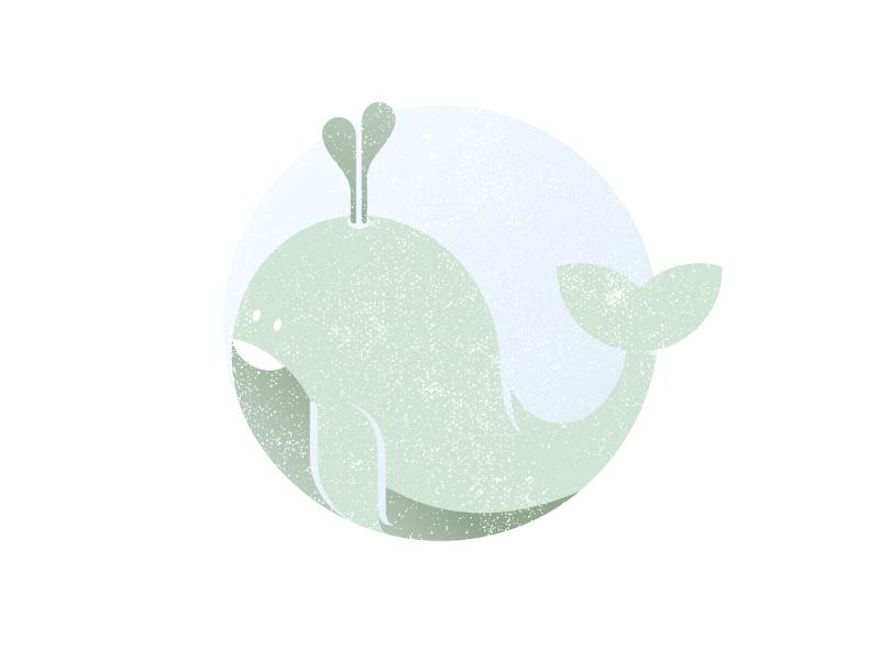 Whale Illustration animal christening whale design illustration