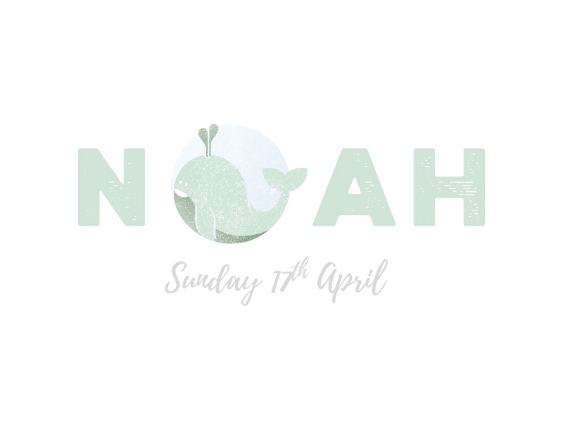 Noah and the Whale christening invitation animal typography type illustration whale