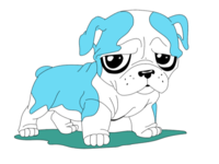 Lil dog
