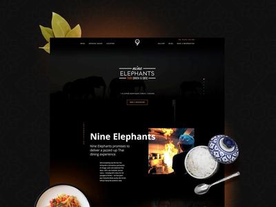 9 Elephants Website