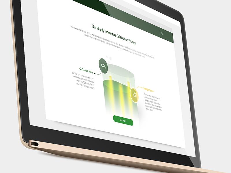 Sunalgae webdesign 1x