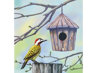 Весна гнездо птица дятел весна иллюстрация