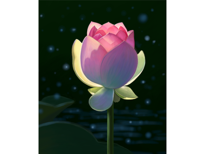 Цветок лотоса пруд цветок лотос лучи солнце дизайн лето иллюстрация