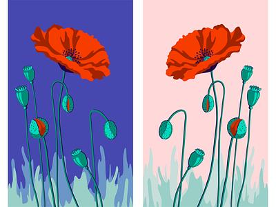 Маки утром и вечером иллюстрация вектор цветы вечер утро маки