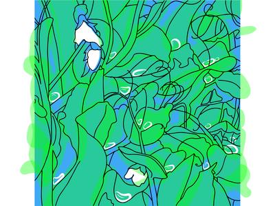 Капли дождя на цветущем горошке