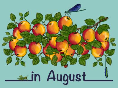 В августе