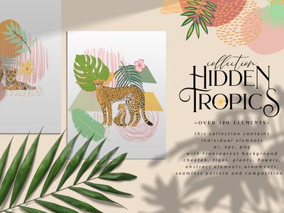Hidden Tropics