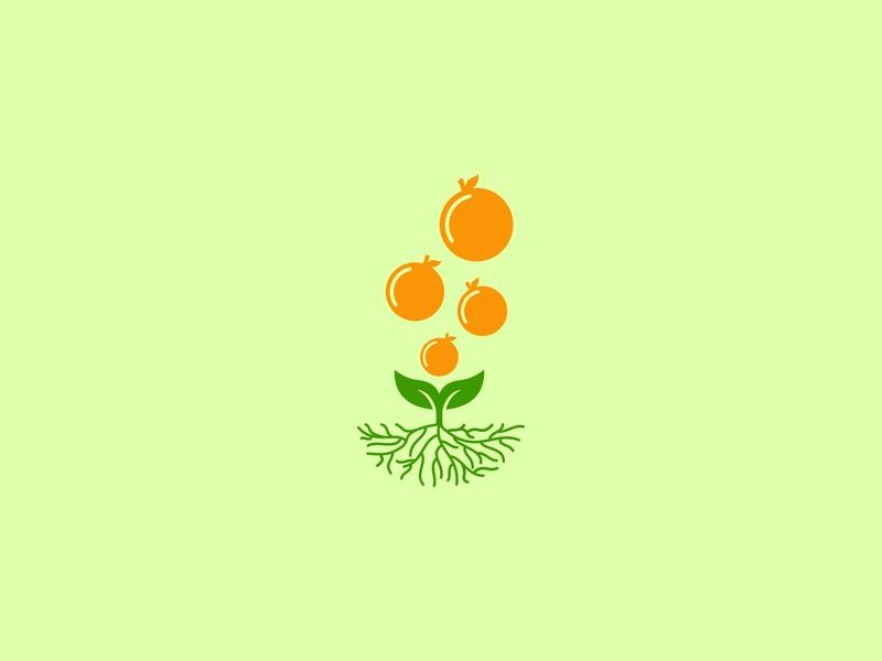 Fruit Bubble Logo design freelancer corporate identity brand identity logo mark logo corporate logo brand logo identity logo designer logo design logo daily logo orange leaf sprout root nature fresh plant bubble fruit