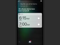 Siri iOS 11 Mockup