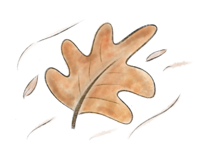 Winter leaf !!