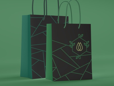 Branded Shopping Bags Design