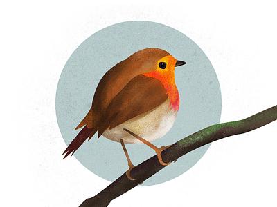 Robin illustration brush stipple webillustration illustration texture robin