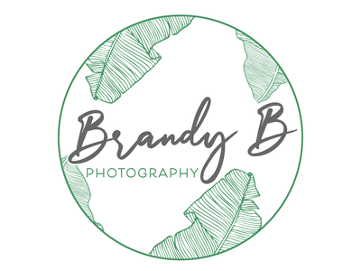 Elegant Photography Logo brand branding logo design design photography logo