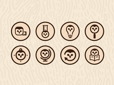 Owl Icons brand identity owl icons icon design flat wood brand