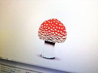 Vector Mushroom for Alchemize Puzzle Game