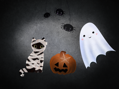 Halloween spiders ghost moomy cat pumpkin halloween procreate illustration