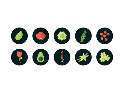 Plant Icon Set for Yipsophilia