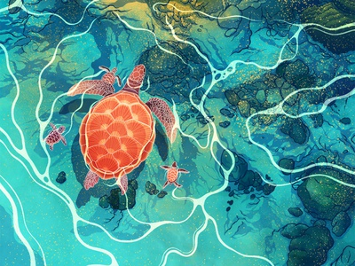 Crystal Clear turtle animal illustration nature editorial editorial illustration procreate art digital design procreate illustrator illustration