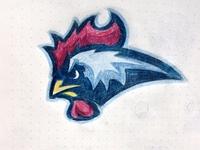Rooster Sportslogo Sketch